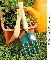 caja, jardinería, planta de semillero, Regar, lata, herramientas
