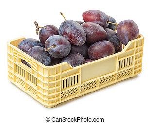 caja, lleno, ciruela, aislado, plano de fondo, violeta, vegetal, blanco
