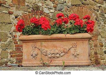 caja, ornamental, terracota, geranio, flores retro, rojo