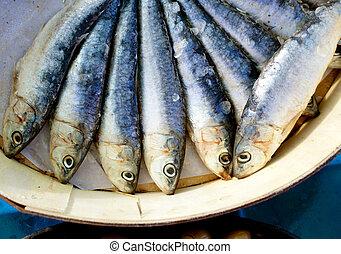 caja, salado, salmuera, madera, sardinas, redondo