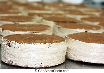 Lot of cakes with chocolate topping