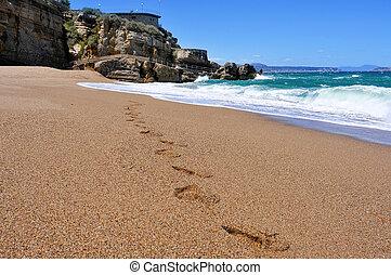 Cala Illa Roja beach in the Costa Brava, in Catalonia, Spain...