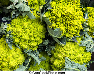 calabrese, verde, bróculi, col