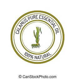 calamus, essential oil label, aromatic plant