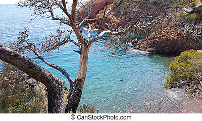 Calanques in Mandelieu, French Riviera