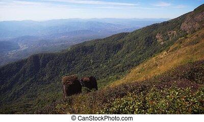 calcaire, chiang, rock., mai, hillside., pays montagne, thaïlande