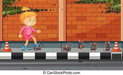 calciare, ragazza, strada, ratti