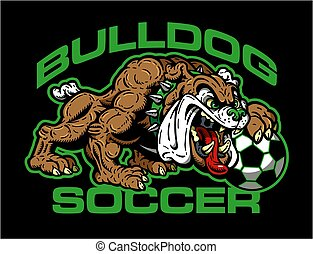 calcio, bulldog