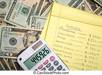 Calculating a budget - Lots of cash, twenty dollar bills,...