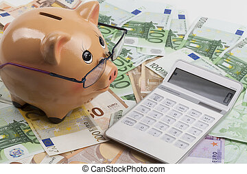Calculating on Euros