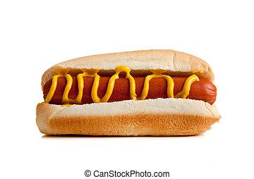 caldo, bianco, senape, fondo, cani