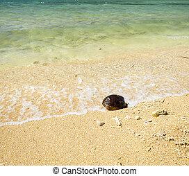 caldo, estate, spiaggia