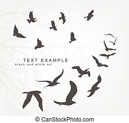 cale, voler, ciel, oiseaux