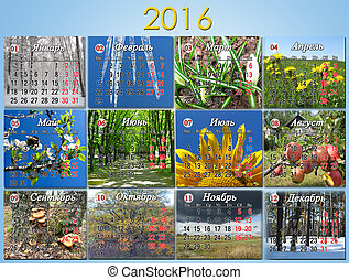 calendar for 2016 with twelve photo of nature