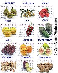 Calendar year 2013