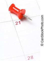 calendario, chinche