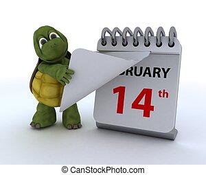 calendrier, tortue