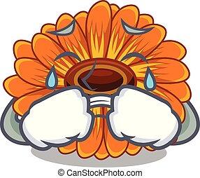 calendula , γουρλίτικο ζώο , λουλούδι , κλαίων , ανακόπτω