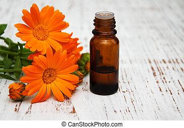 calendula, 花, オイル, マッサージ
