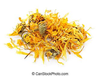 calendula, aromate, fleurs, séché