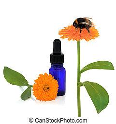 calendula, aromatherapy