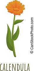 Calendula flower icon. Cartoon of calendula flower vector icon for web design isolated on white background