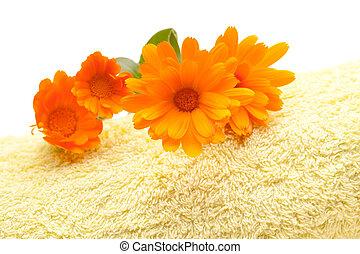 Calendula Flowers On Yellow Towel