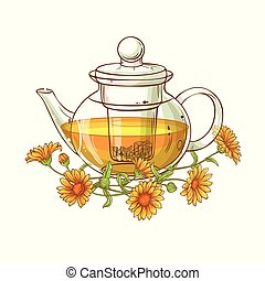 calendula tea vector illustration on white background