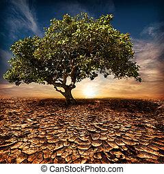 calentamiento del planeta, concepto