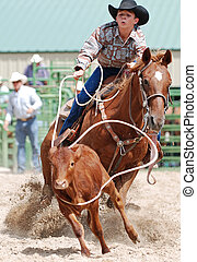 Calf Roping - Young man roping a calf in a rodeo competition...