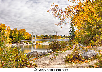 calgary, ponte, in, autunno