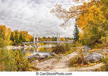 calgary, puente, en, otoño