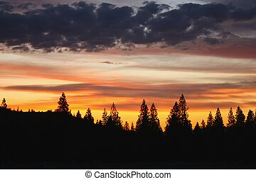 california 日の入, 北