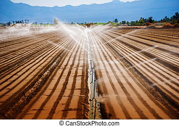 California Agriculture. Soil Watering Irrigation System.