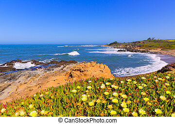 California Bean Hollow State beach in Cabrillo Hwy - ...