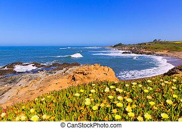 California Bean Hollow State beach in Cabrillo Hwy -...