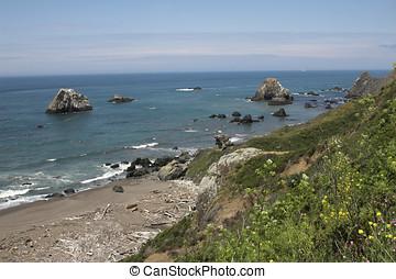California coastline across highway 1