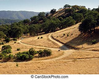california, colline