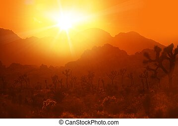 California Desert Heat. Hot Summer Day in Joshua National Park, California, United States.