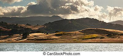 California hillside in summer