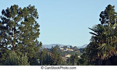 California Hillside Living