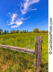 California meadow ranch in a blue sky spring day USA
