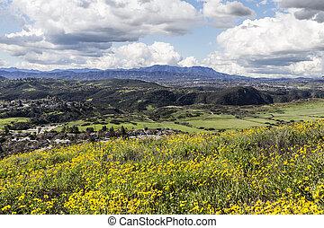 California Meadows - Suburban Thousand Oaks near Los Angeles...