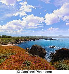California Pigeon point beach in Cabrillo Hwy coastal hwy 1...