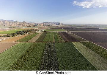 California Row Crops Farm Land Aerial