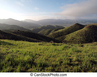California Spring - Lush spring grass in the Simi Hills...