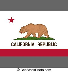 California State Flag 1953