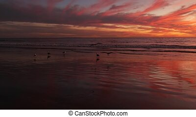 California summertime beach aesthetic, golden sunset. Vivid dramatic clouds over pacific ocean waves. Santa Monica popular resort, Los Angeles CA USA. Atmospheric moody purple evening sundown in LA.