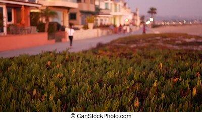 California summertime dusk beach aesthetic, pink sunset over beachfront weekend houses. Blurred defocused people walking, seafront promenade in Newport, pacific ocean resort near Los Angeles CA USA.
