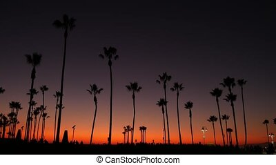 California summertime dusk twilight aesthetic, purple ...